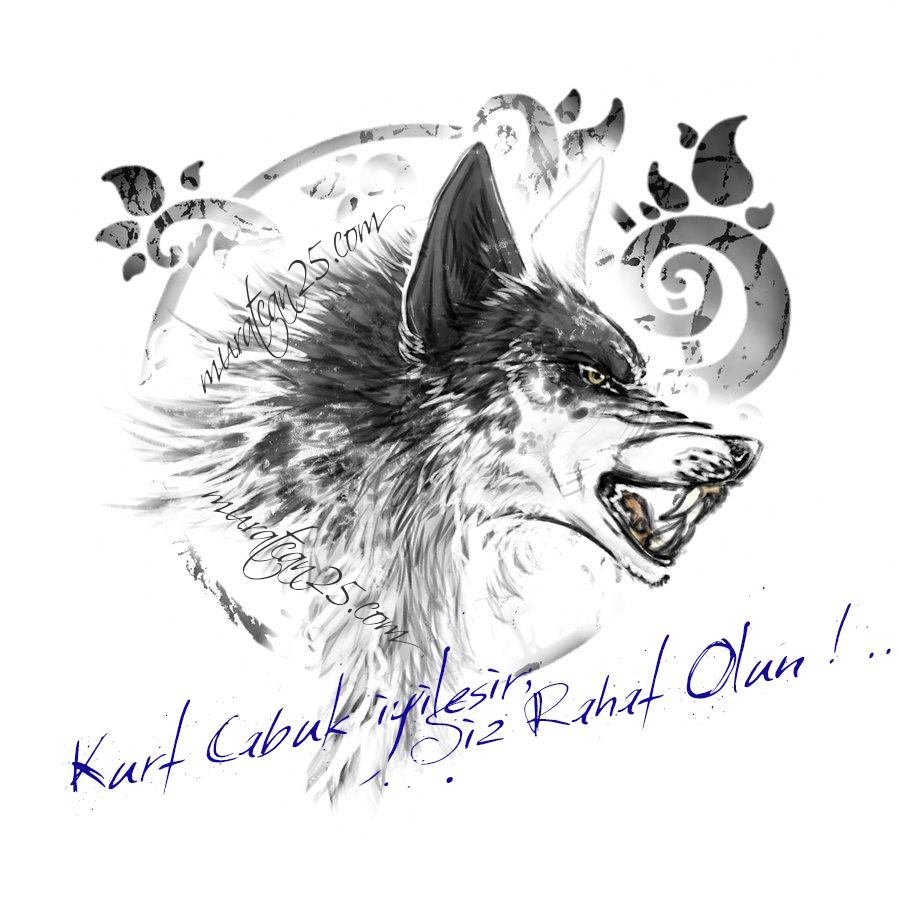 Wolf  / Kurt / cCc